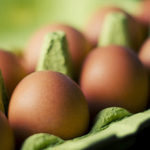 Coping with the Egg Shortage